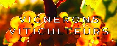 Vignerons et viticulteurs